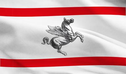 tosvcana flag