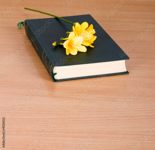 yellow freesia on a closed book