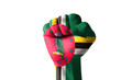 Fist painted in colors of dominica flag