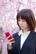 Princess MAIKO Benicio with Smart Phone / Plum flower