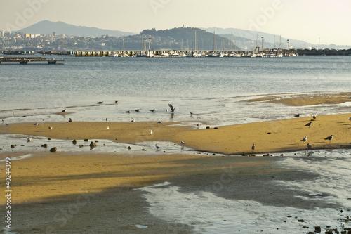 Ria of Vigo, Pontevedra, Galicia, Spain