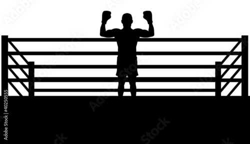 Champion Boxer