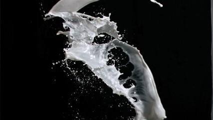 Milk splashes in super slow motion