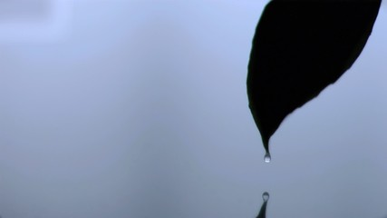 Drop dipping in super slow motion