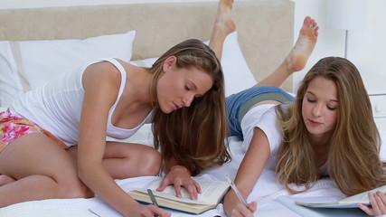 Smiling young women doing their homework together