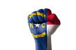 Fist painted in colors of us state of north carolina flag