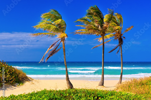 The beach in Cuba on a beautiful summer day