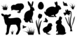 set of Easter symbols - 40256129