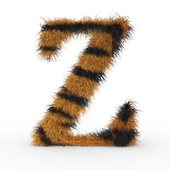 Texteffekt Haare Tiger Z