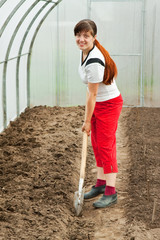 female gardener spading  in hothouse