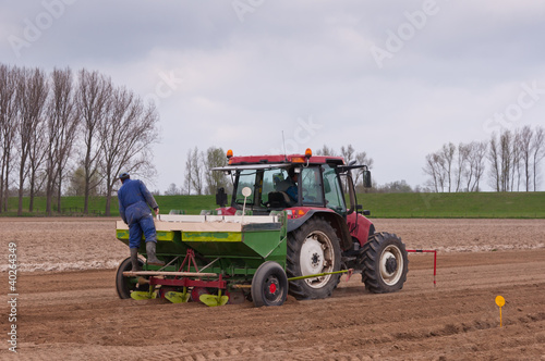 Planting potatoes in a Dutch field