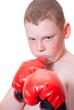Постер, плакат: Мальчик боксер