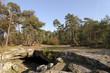 forêt dr Fontainebleau, grotte Béatrix