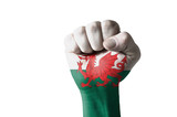 Fist painted in colors of wales flag