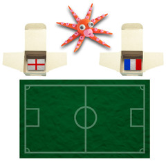 Squid Football with the flag France and England