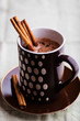 Mug of Hot Chocolate with Cinnamon
