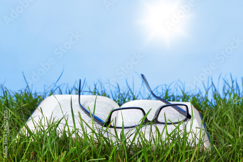 Open book and spectacles outdoors on a sunny day