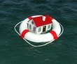 Home and lifebuoy in water. 3d rendering