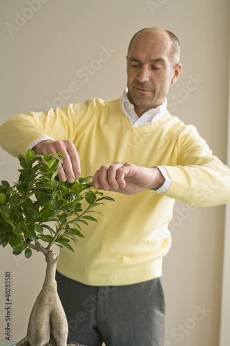 Mature man pruning plant
