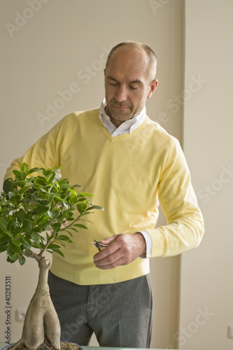 Mature man pruning potted plant with scissors