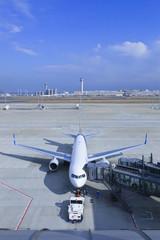 Tokyo_airport_03