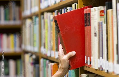 Picking a Book - 40288398