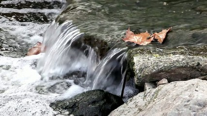 Water, stones and leafs