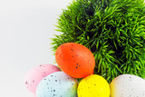 Dyed easter eggs with green decoration poster