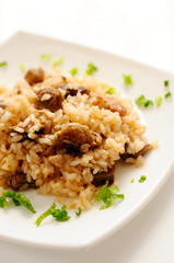 A delicious pilaf with meat