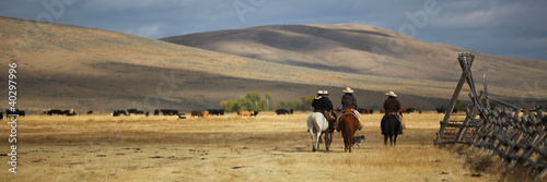 canvas print picture Cattledrive
