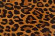 Leinwanddruck Bild - Leopard print pattern