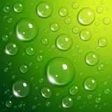 Fototapete Blase - Grün - Flüssigkeiten