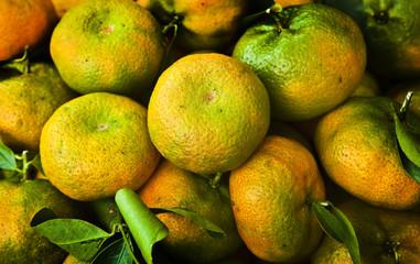 Oranges, mandarins