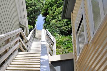 Stairs in a neighborhood of Wellington, New Zealand
