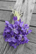 bouquet of violets on old wooden table