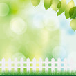 spring background with fence and grass