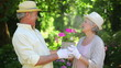 Mature couple holding a flowerpot together