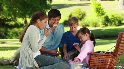 Family eating sandwiches during a picnic