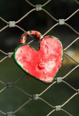 Herz Vorhängeschloß an einem Zaun
