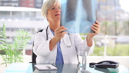 Serious practitioner holding a chest x-ray