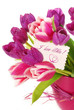 bunch of tulips with greetings card