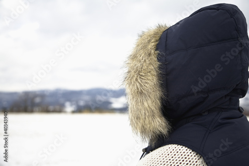 Mid adult woman overlooking snowcapped landscape, rear view