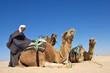 Chamelier dans le désert #2