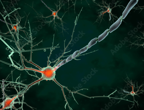 Cell body of a neuron long shot
