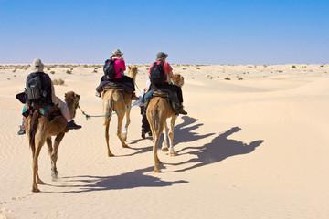 Touristes à dos de dromadaire dans le désert