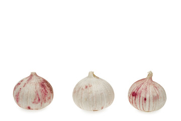 Garlic against white background