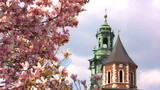Sigmund Cathedral and Wawel Castle at spring, Krakow