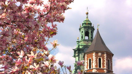 Sigmund Cathedral and Wawel Castle at spring, Krakow