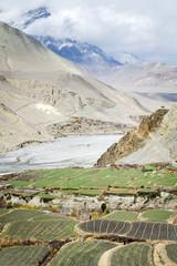 Spring in Himalaya mountains