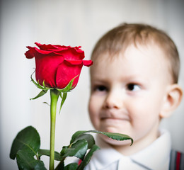 little boy and the big red rose